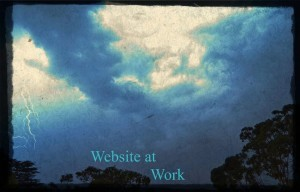 Websites sell rain or shine