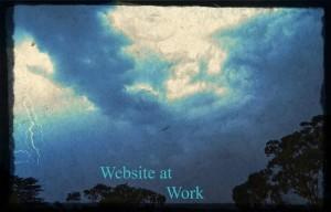 Websites sell rain or shine